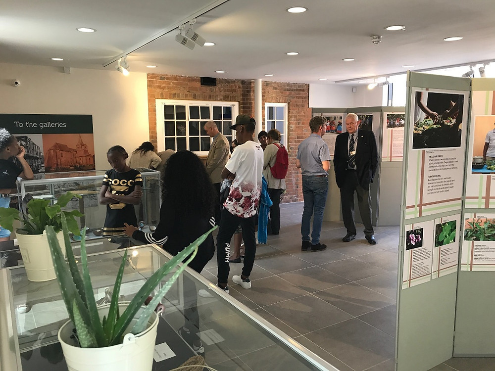 Guests look at the Chagos Project exhibition at Crawley museum