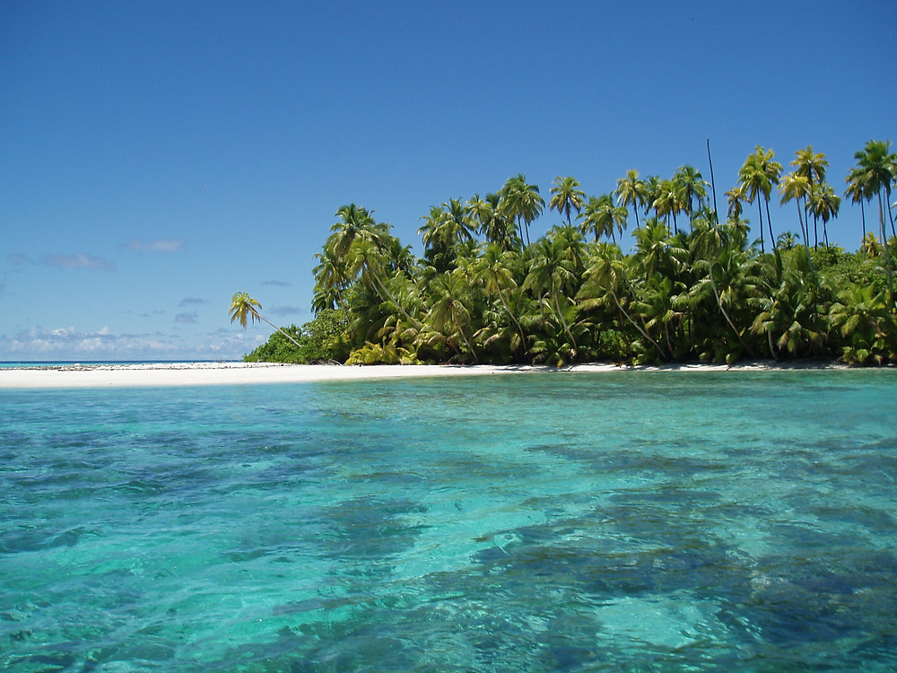 The Chagos Marine Protected Area, created in 2010, is one of the biggest in the world