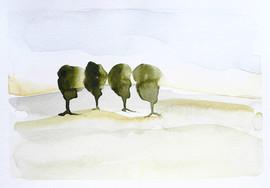"""Four Trees, 21X15"""""""