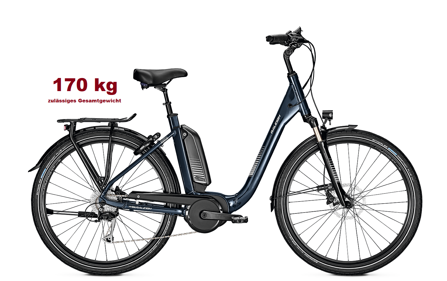 Raleigh Kingston 9 XXL ab 2.899,- €