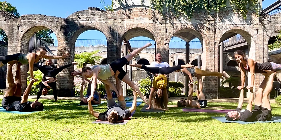 Monthly Acroyoga for beginner - inter Workshop May
