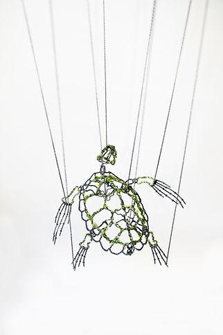 Tartaruga Marinha.jpg