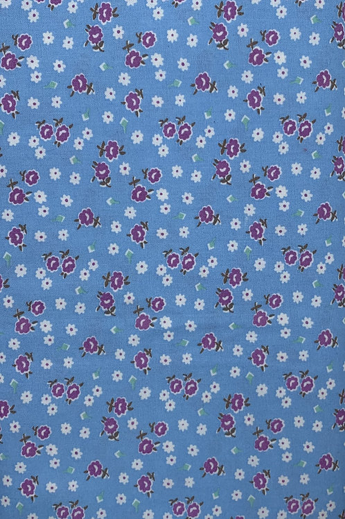 Purple and White Flowers on Blue Background