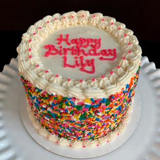 Birthday sprinkle cake