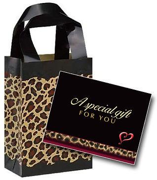 SC Gift Card Bag.jpg