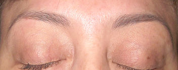 Brows Micro B cropped DSCF7474.jpg