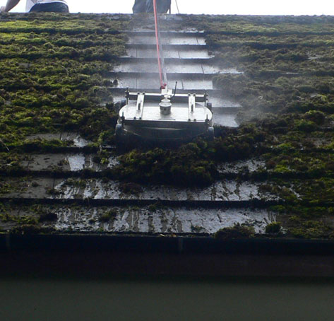 roof cleaning with moss before