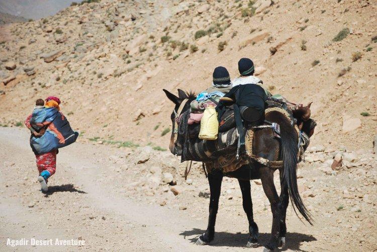Les nomades des montagnes