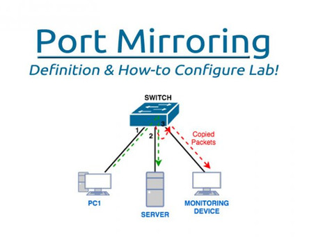 Port mirroring (roving analysis port)