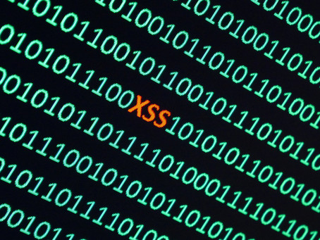 What is Cross Site Scripting (XSS) ?