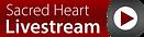 Sacred Heart Livestream-03.png