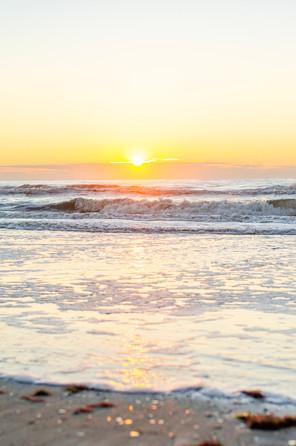 Shore2021-17.jpg
