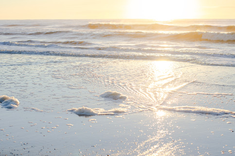 Shore2021-35.jpg