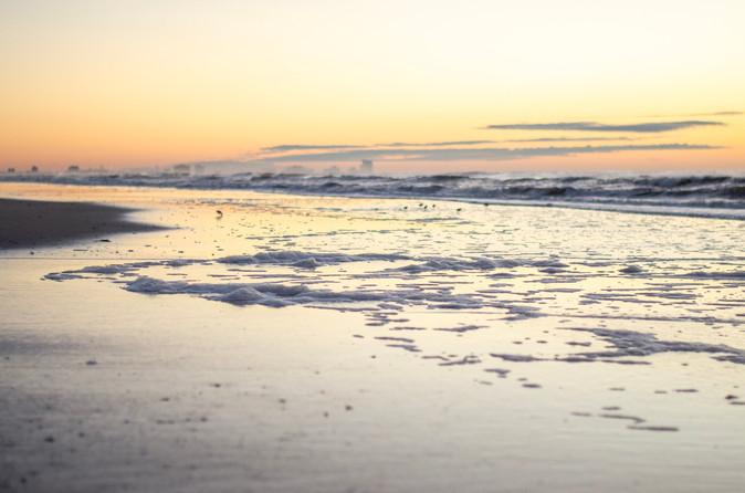 Shore2021-4.jpg