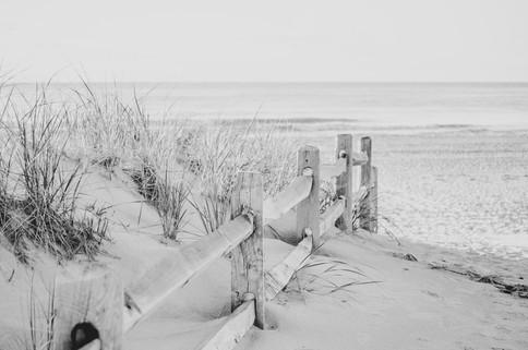 Shore2021-47.jpg