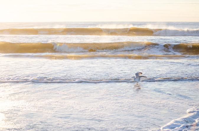 Shore2021-42.jpg