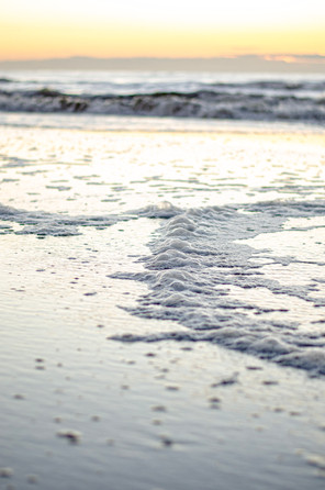 Shore2021-13.jpg
