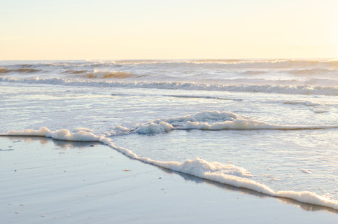 Shore2021-36.jpg