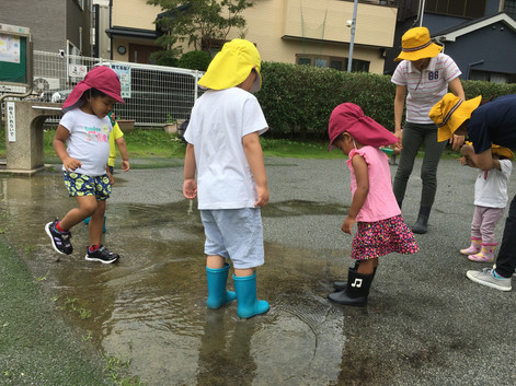 雨遊び:よこすか保育園
