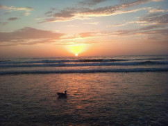 san_diego_by_ahoover726-d6h7use.jpg