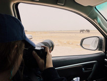 Photographing Elephants in a self-drive safari in Namibia.
