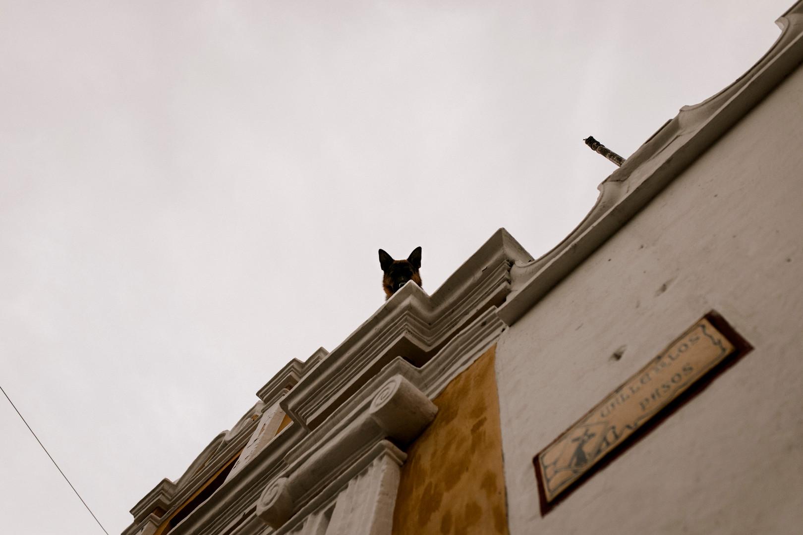 Guate-81.jpg