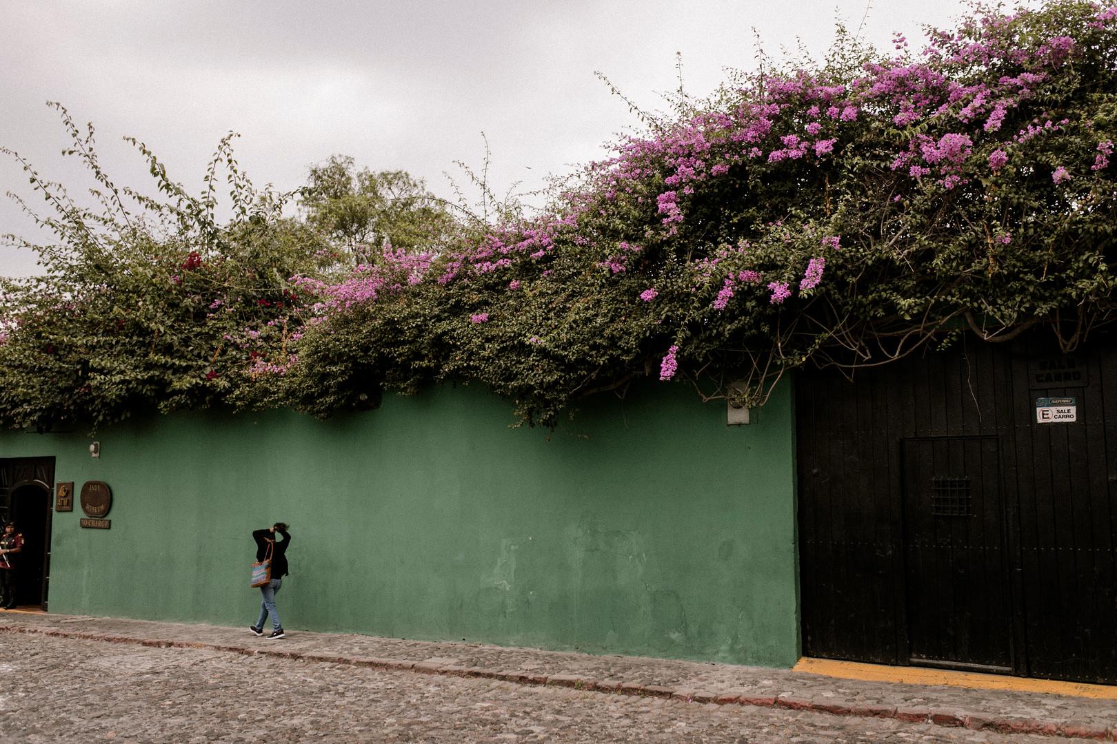 Guate-44.jpg