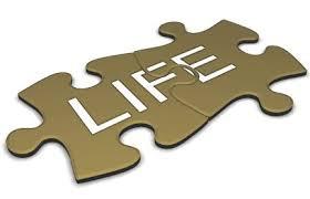 life puzzle.jpg