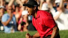 Golf Pro & Pro Trader