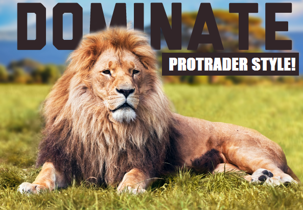 dominate protrader style.png