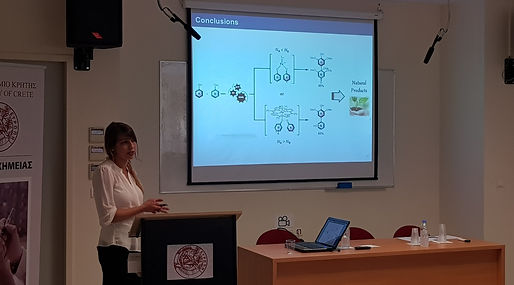 Anna presenting at the International symposium in Heraklion (2018)