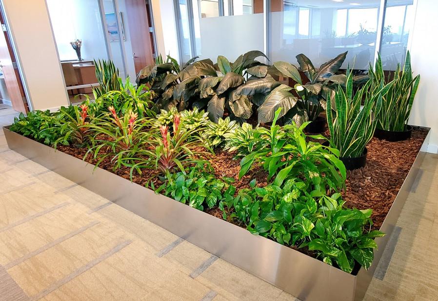 Indoor Gardens 3