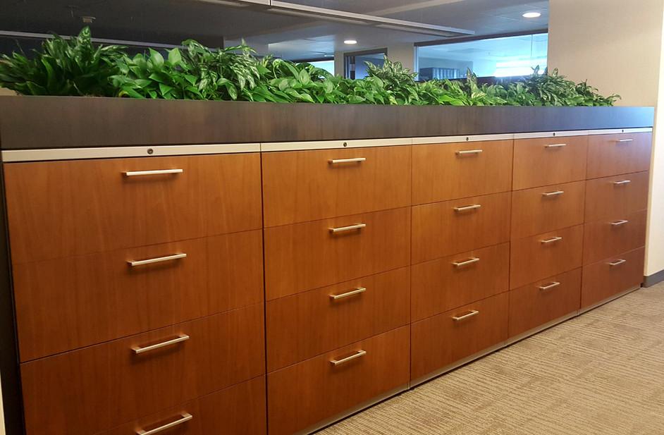 Unique Office Green Spaces