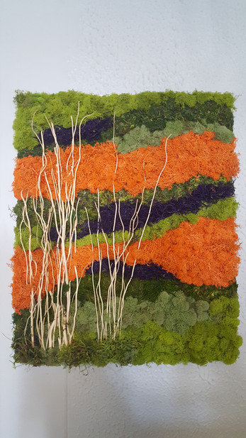Custom-Made Moss Walls