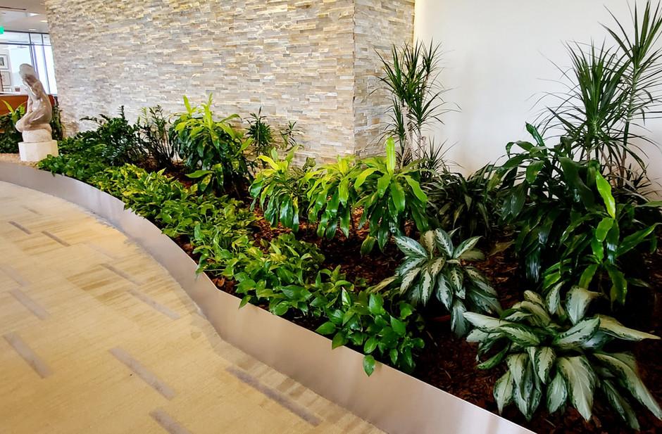Indoor Gardens 2