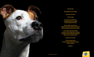 Agency: TBWA\Chiat Day | Client: Pedigree