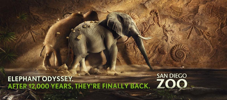 Agency: M&C Saatchi | Client: San Diego Zoo