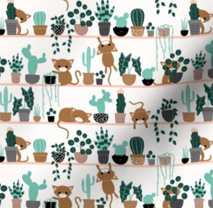 Kittens in Plants