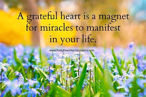 Attitude of Gratitude : Have a Grateful Heart