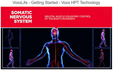 Voxxlife HPT Technology explained