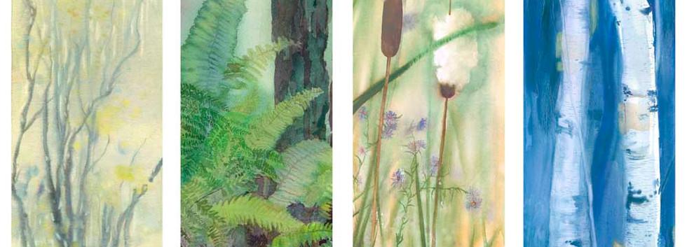 Four Seasons: Earliest Spring, Summer Fern, Autumn Asters & Winter Birch
