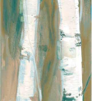 Winer Birch: brown variation