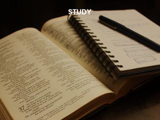 STUDY2.png