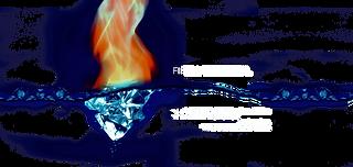 FireNIce_Facial3.png