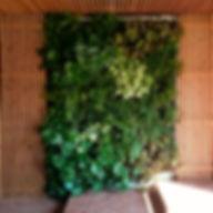 jardin_vertical_local.jpg