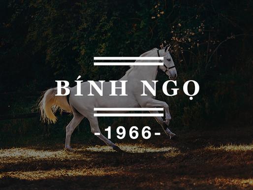 Người sinh năm Bính Ngọ 1966 nên đeo đá quý màu gì ? Tư vấn đá phong thủy cho người sinh năm 1966.
