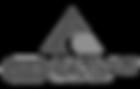 auckland-hospital-logo.png