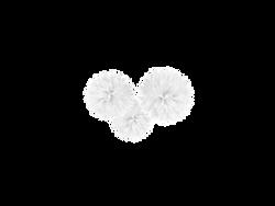 whiteflowerpoms