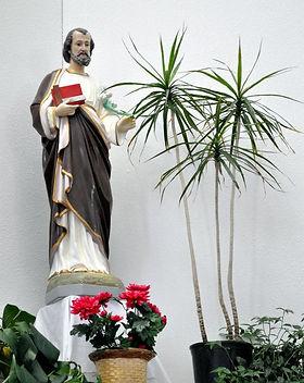 CTK Joseph w Plant.jpg