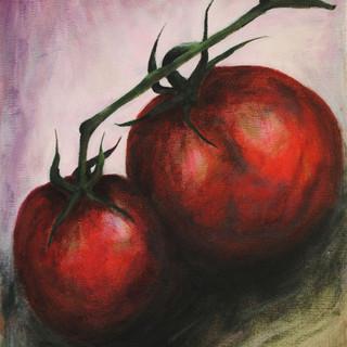 TaylorShore Tomatoes.jpg